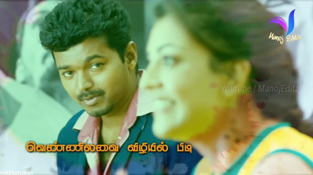 Vijay Love Status Song in Tamil | Tamil Status Video Free Download WhatsApp Status