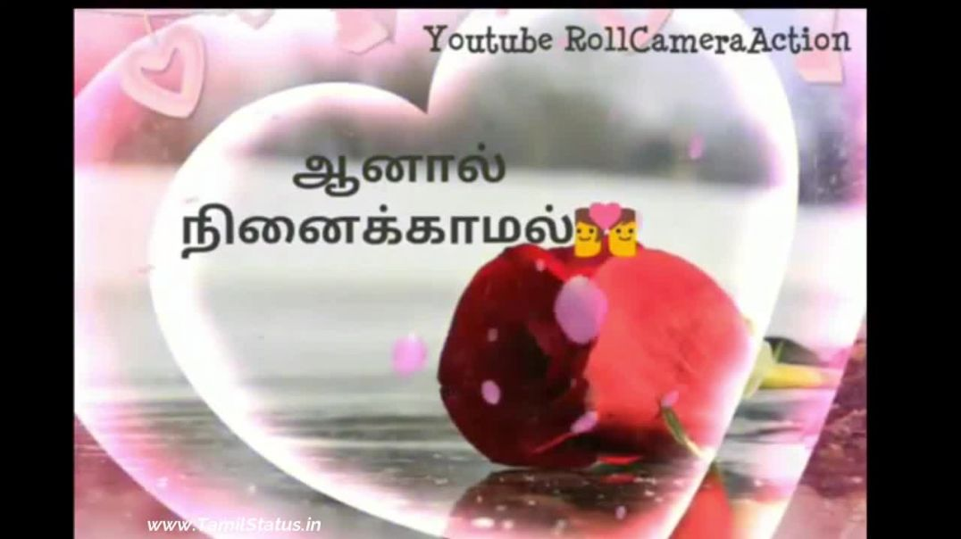 Most Romantic Love Quotes Whatsapp Vdeo status download | Tamil Status
