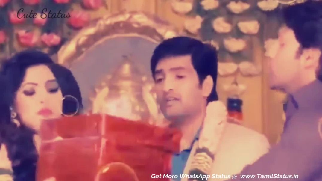Tamil Status Video Free Download | Santhanam Comedy Scenes Whatsapp Status HD Download