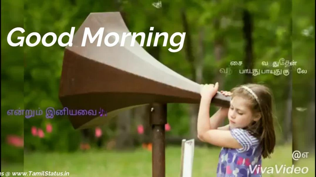 Good Morning WhatsApp Status Video Free Download  ||  Cute Tamil Status Download