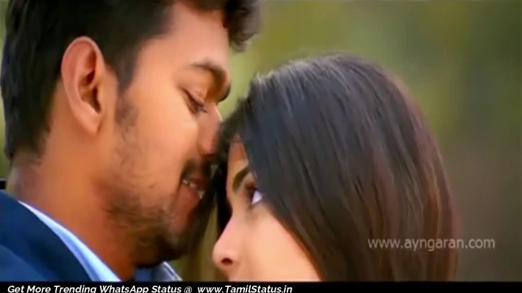 Vijay Love songs Download Whatsapp Tamil Status | Tamil Status video Free download