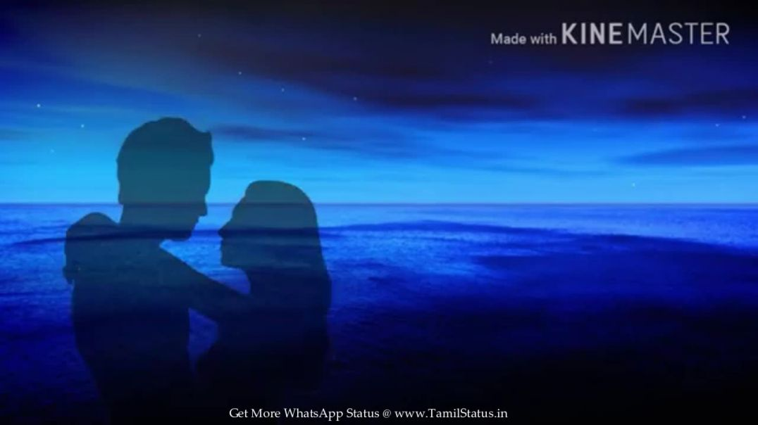 Cute Love song Mp4 Status Videos || tamil status download