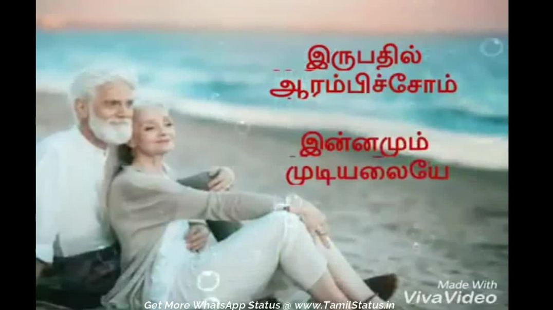 Beautiful love song whatsapp status 30 sec video | Tamil Status