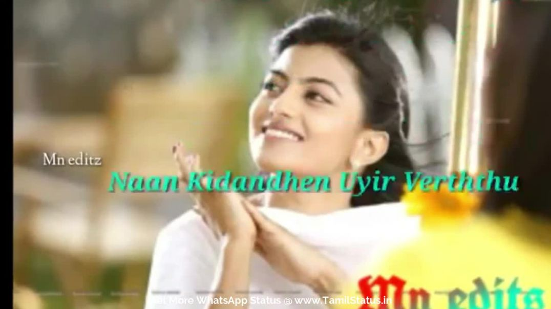 Cute romantic love whatsapp status download || Tamil status