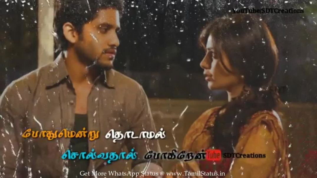 Cute Tamil Status Whatsapp for lovely lyrics downloads