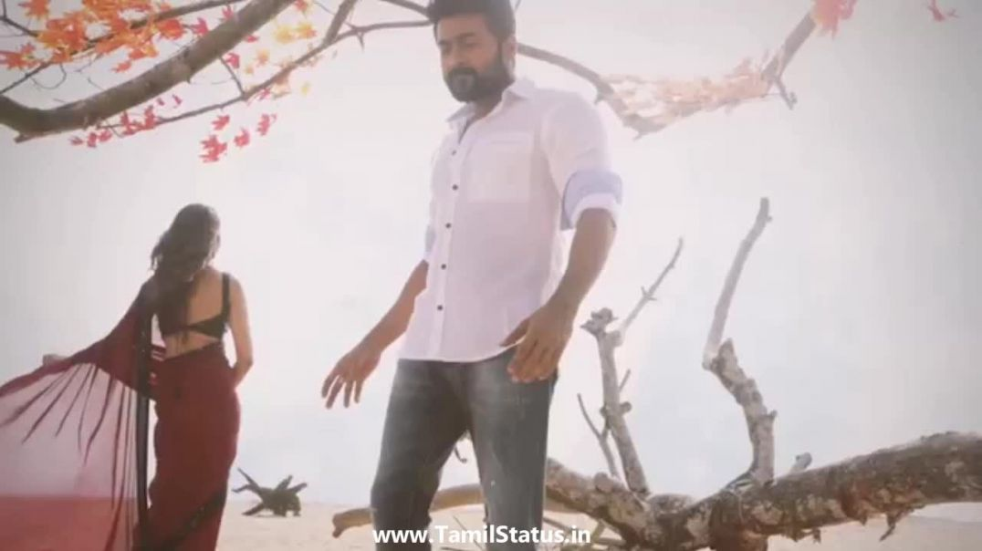 NGK anbe peranbu song whatsapp status download || Tamil status free download