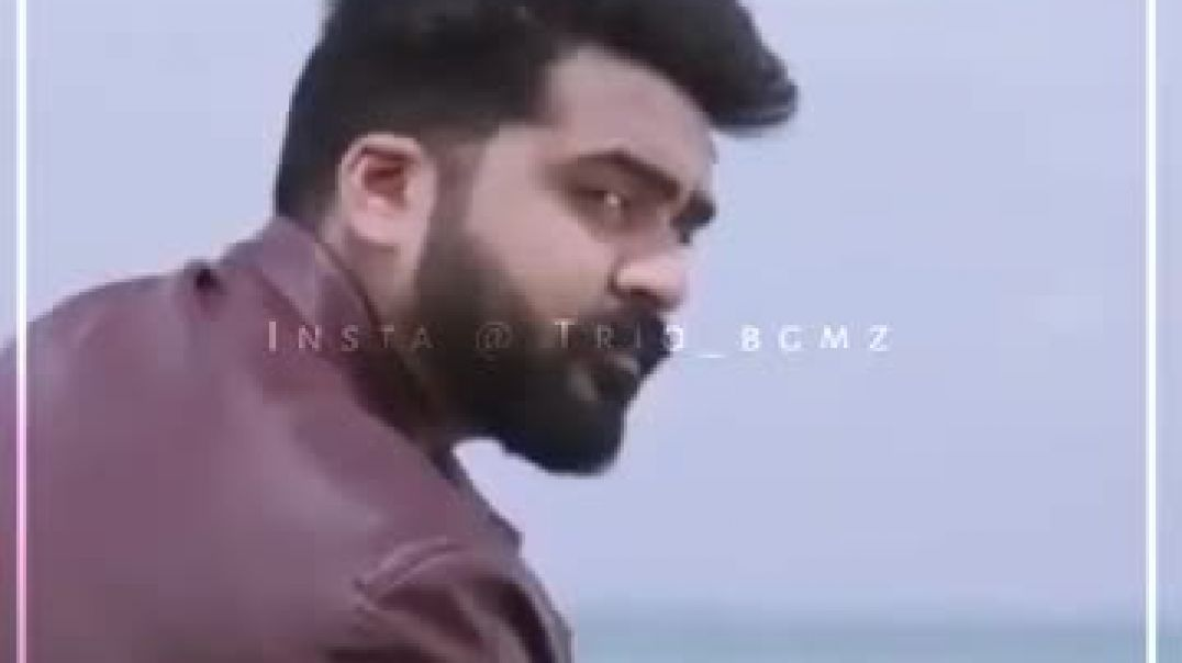 Beard Whatsapp Status Download || Beard Lovers Mass Video for Status || New
