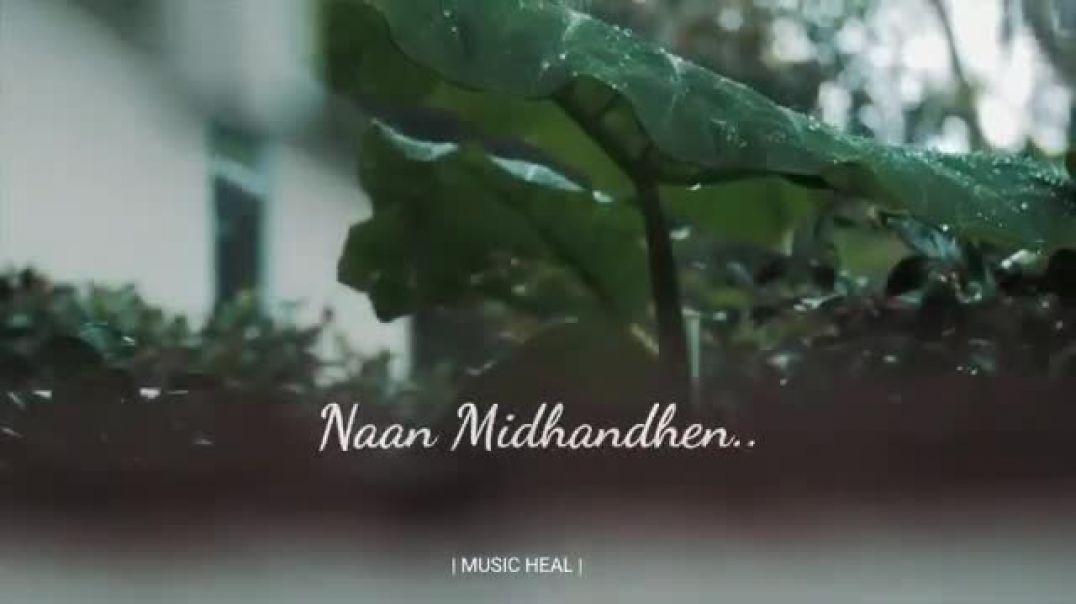 Melody tamil whatsapp video for chill climate